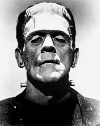 Frankenstein LInkedIn Profile Pic